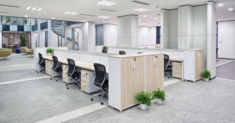 Invloed van planten op de productiviteit binnen uw bedrijf